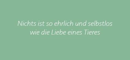 Sprüche02.2